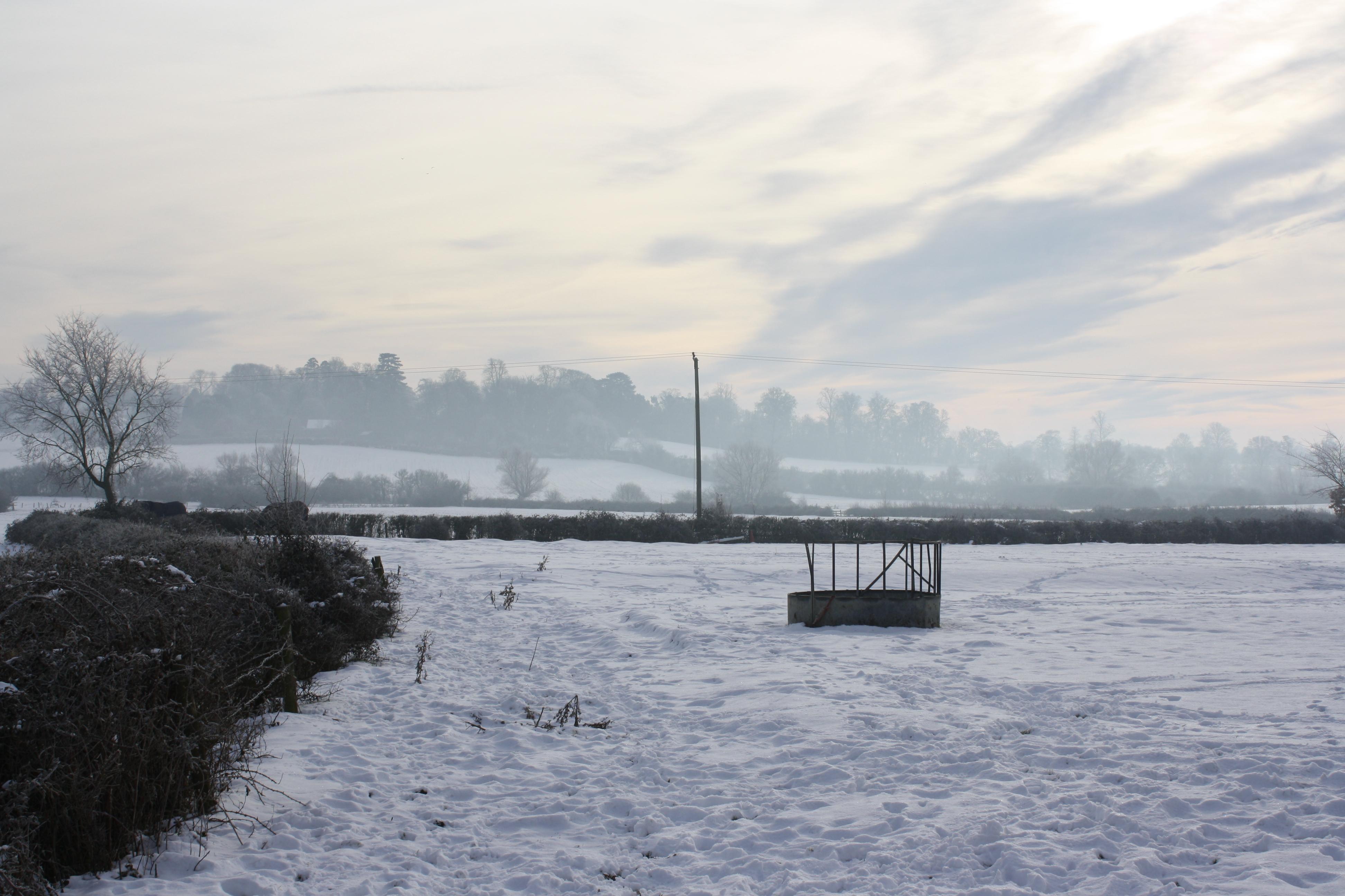 Snow at Hardwick